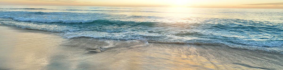 beach info header