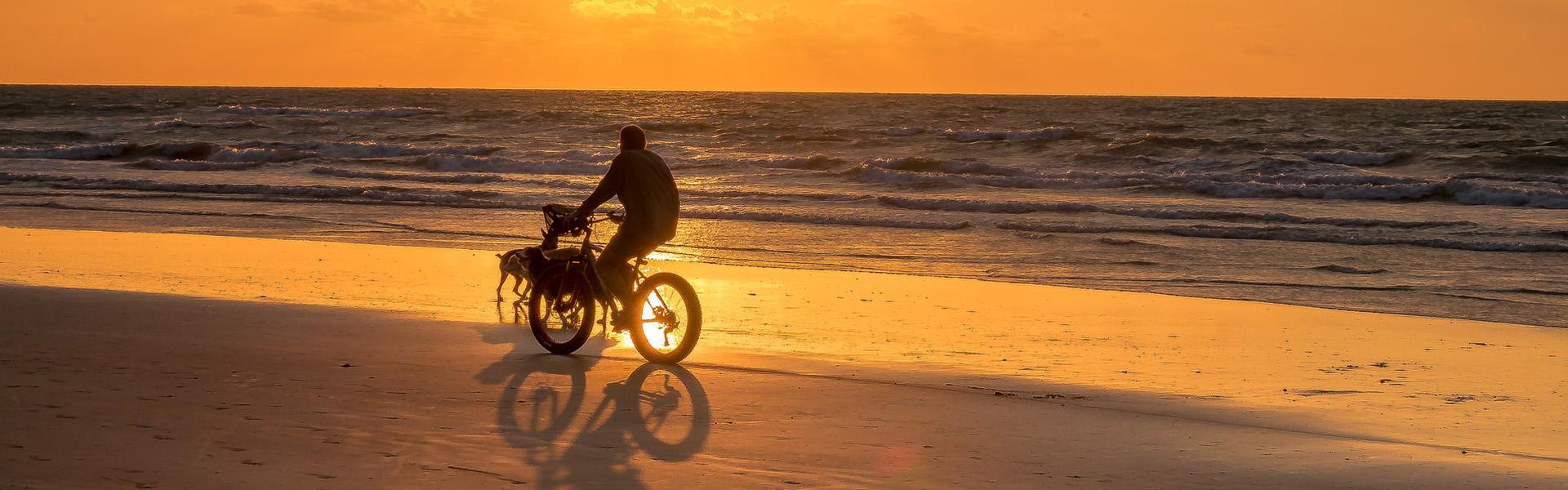 bicycle header 2