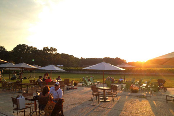 HawkHaven Sunset