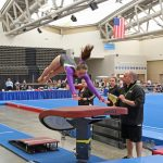 regional gymnastics championship